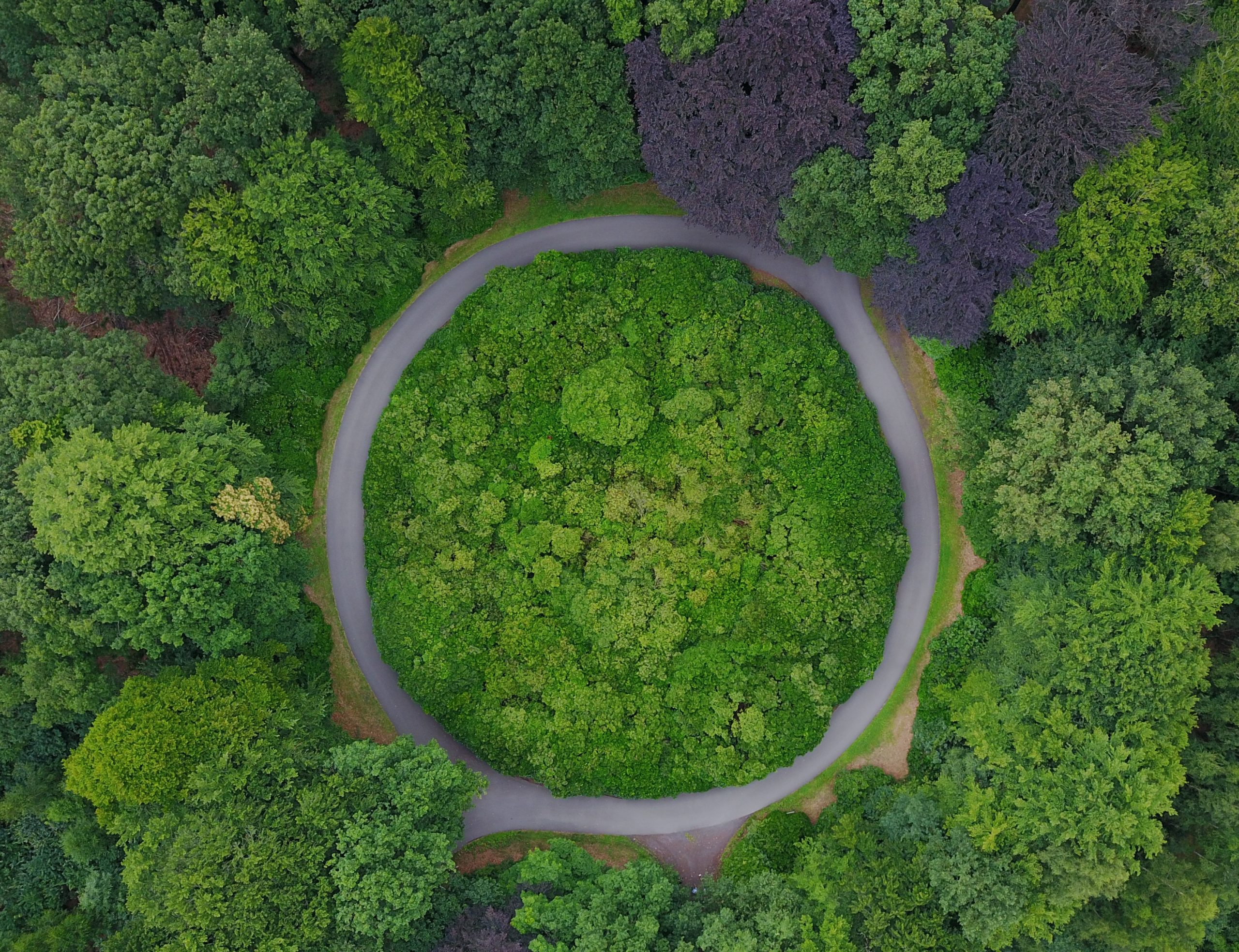 GreenBiz offers Free Virtual Conference for Circular Economy: Circularity 20 August 25-27, 2020