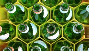 Circular Economy Glass Bottles